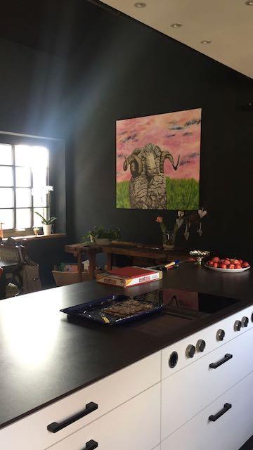 Widder in Küche